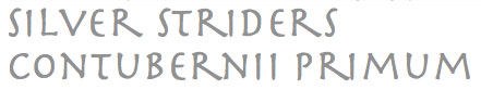 Silver Striders Logo